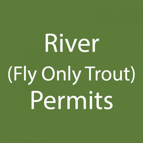 River (Fly Only Trout)