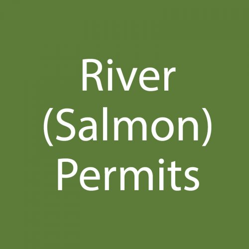 River (Salmon)